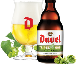 "REVIEW: Tripel Hop Citra<span class=""rating-result after_title mr-filter rating-result-101"" >	<span class=""mr-star-rating"">			    <i class=""fa fa-star mr-star-full""></i>	    	    <i class=""fa fa-star mr-star-full""></i>	    	    <i class=""fa fa-star mr-star-full""></i>	    	    <i class=""fa fa-star mr-star-full""></i>	    	    <i class=""fa fa-star-half-o mr-star-half""></i>	    </span><span class=""star-result"">	4.5/5</span>			<span class=""count"">				(1)			</span>			</span>"